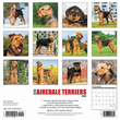 2020 Airedale Terriers Calendar Willow Creek