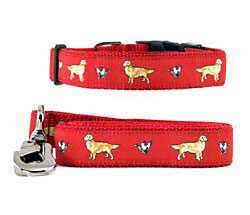 Golden Retriever Collar & Leash