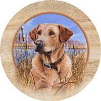 Yellow Lab Drink Coasters