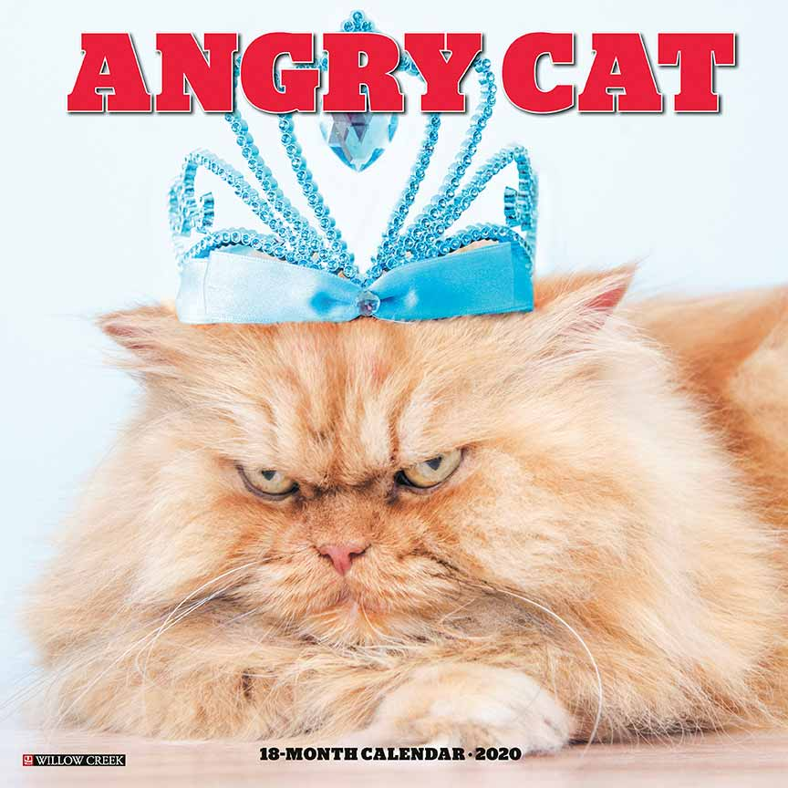 2020 Angry Cat Calendar Willow Creek Press