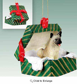 Akita Gift Box Christmas Ornament Fawn