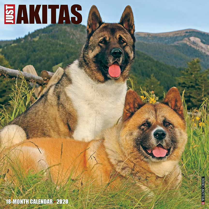 2020 Akitas Calendar Willow Creek