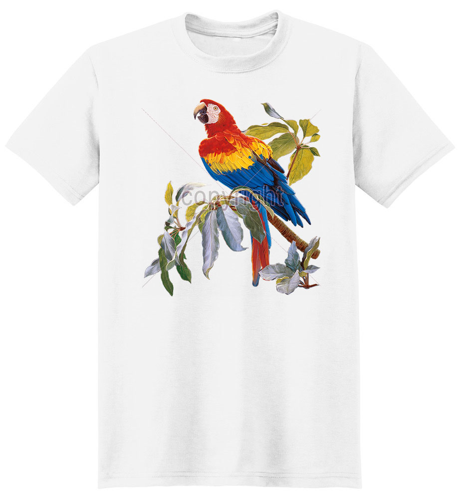 Macaw T Shirt Scarlet