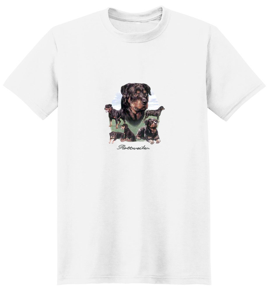 Rottweiler T-Shirt - Different Poses