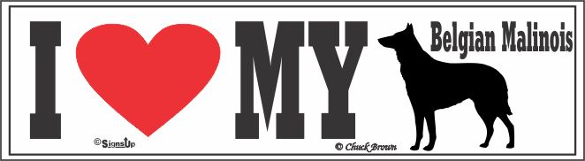 Belgian Malinois Bumper Sticker I Love My