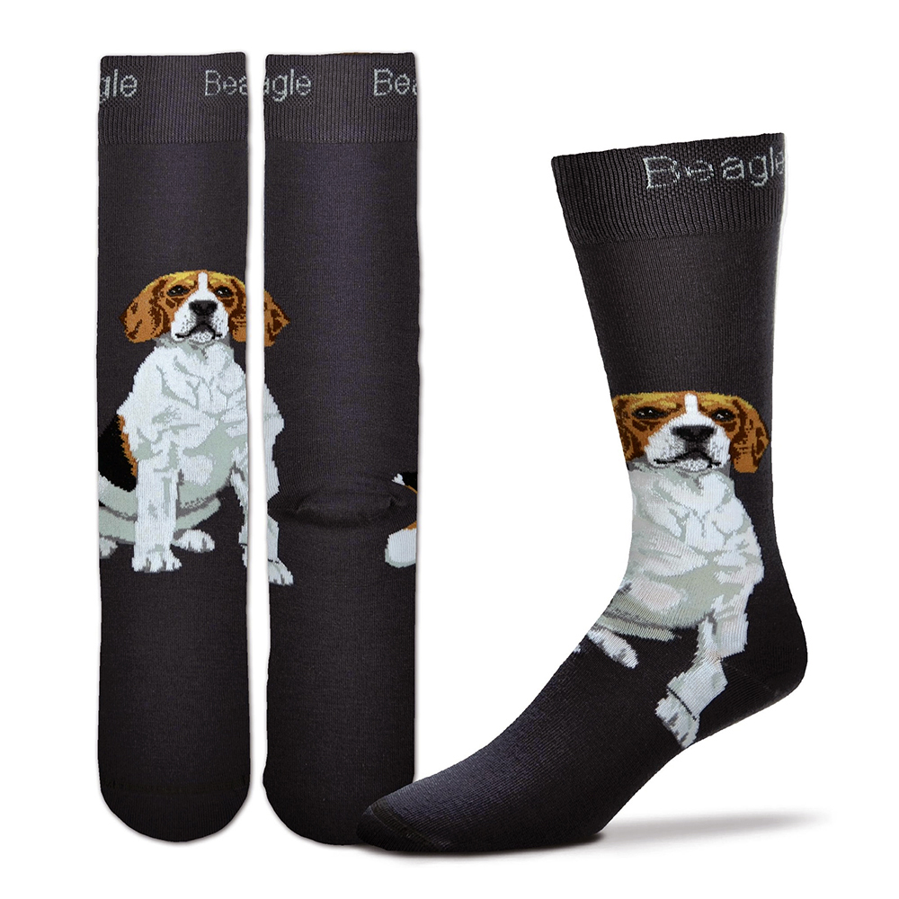 Beagle Realistic Socks
