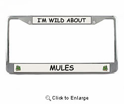Mule License Plate Frame
