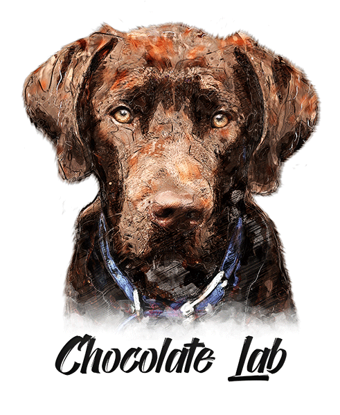 Chocolate Lab T-Shirt - Vivid Colors