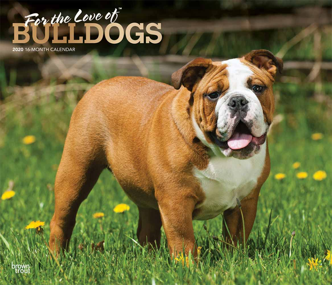 2020 For the Love of Bulldogs Deluxe Calendar