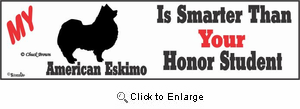 American Eskimo Dog Bumper Sticker Honor Student