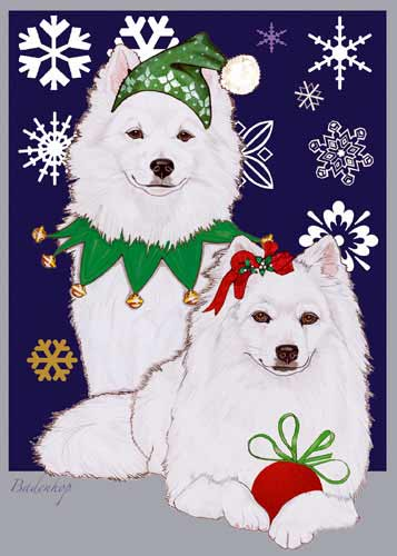 American Eskimo Dog Christmas Cards