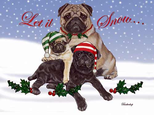 Pug Christmas Cards Snow