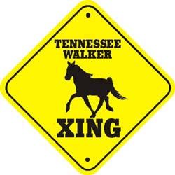 Tennessee Walking Horse Crossing