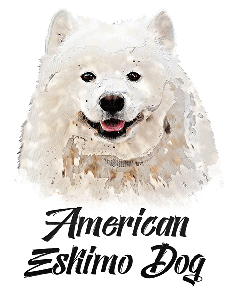 American Eskimo Dog T-Shirt - Vivid Colors