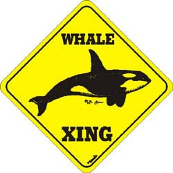 Whale Crossing