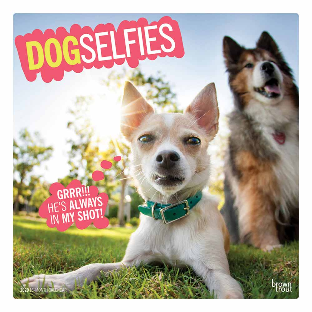 2020 Dog Selfies Calendar