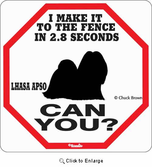 Lhasa Apso 2.8 Seconds Sign