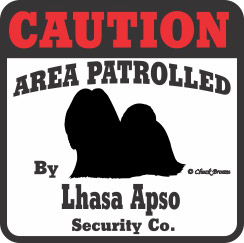 Lhasa Apso Bumper Sticker Caution