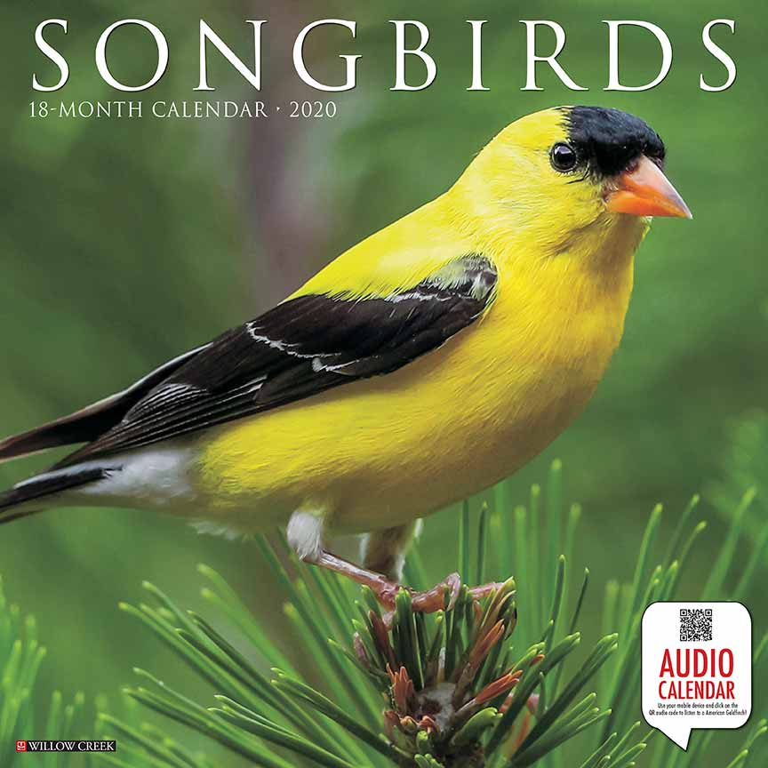 2020 Songbirds Calendar Willow Creek