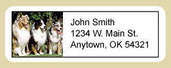 Australian Shepherd Address Labels