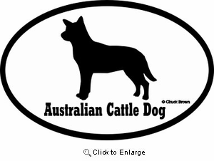 Australian Cattle Dog Bumper Sticker Euro