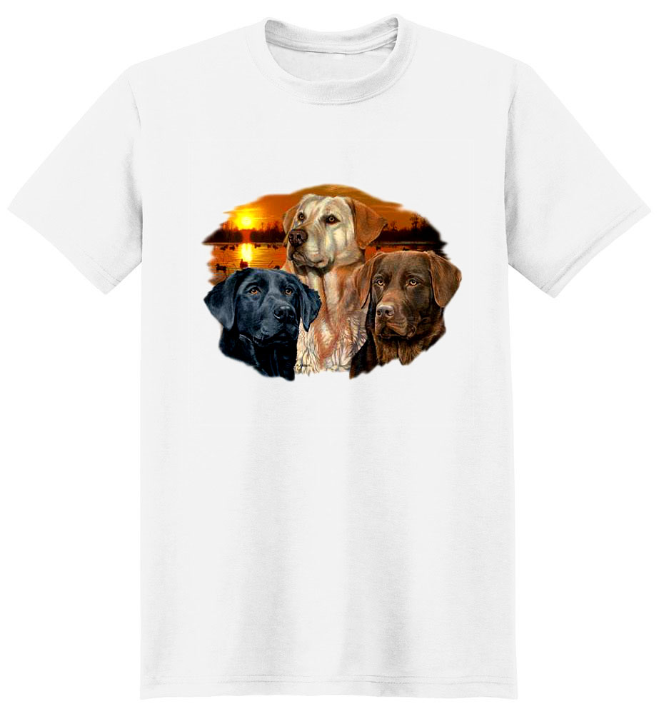 Lab T-Shirt - Eye Catching