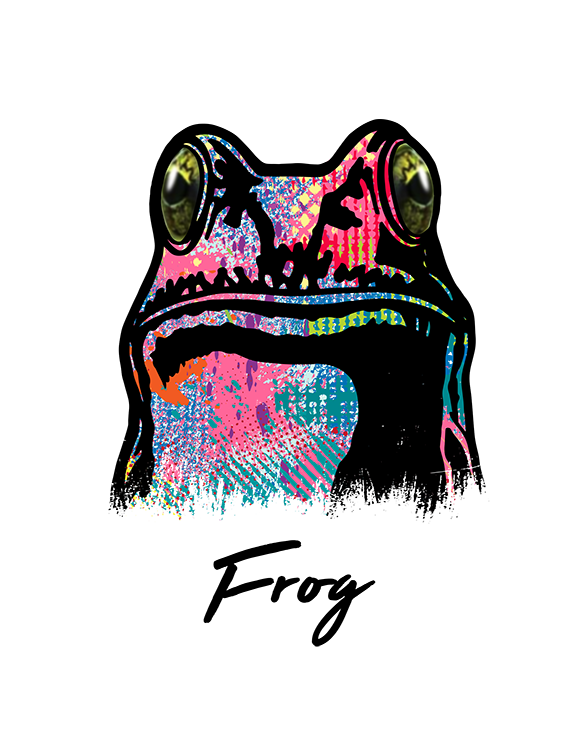 Frog T Shirt Colorful Abstract