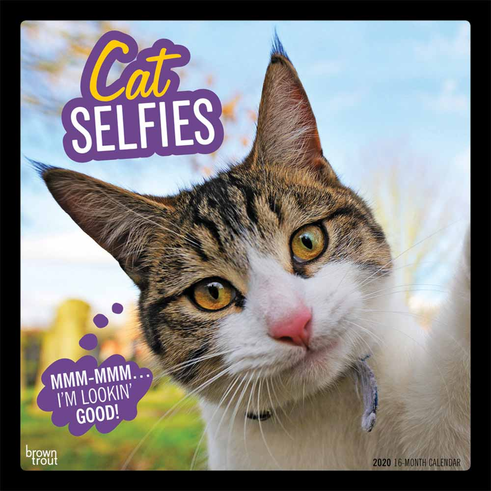 2020 Cat Selfies Calendar