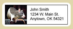Rat Address Labels