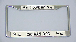 Canaan Dog License Plate Frame - Chrome