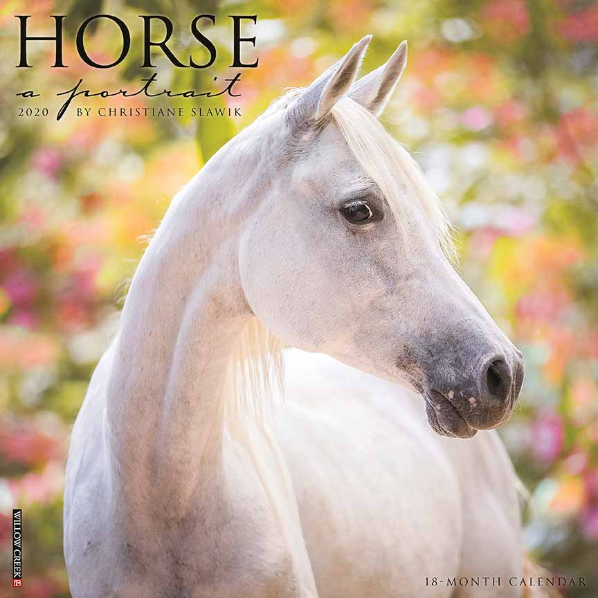 2020 Horse: A Portrait Calendar Willow Creek