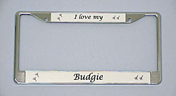 Budgie License Plate Frame - Chrome