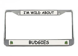 Budgie License Plate Frame