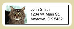 Maine Coon Cat Address Labels
