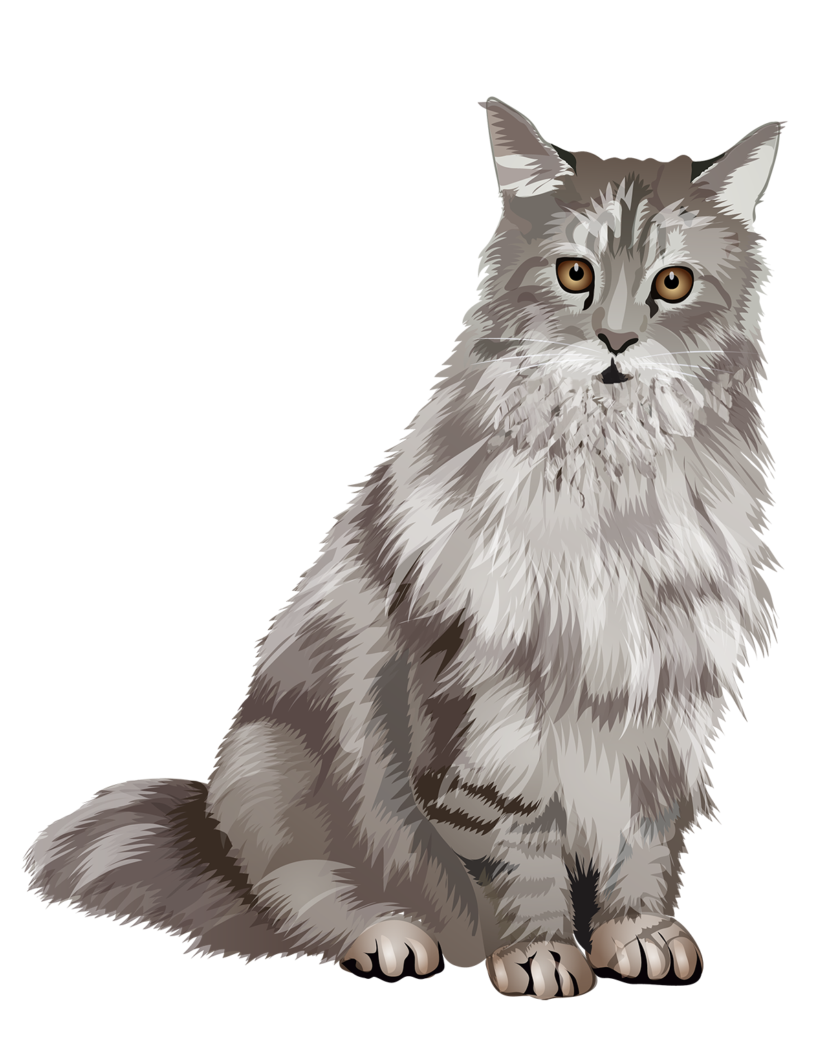 Maine Coon Cat T-Shirt Sweet and Soft - Vibrant Vector
