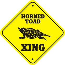 Horned Toad Crossing
