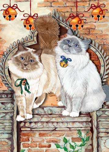 Birman Cat Christmas Cards