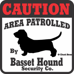 Basset Hound Bumper Sticker Caution
