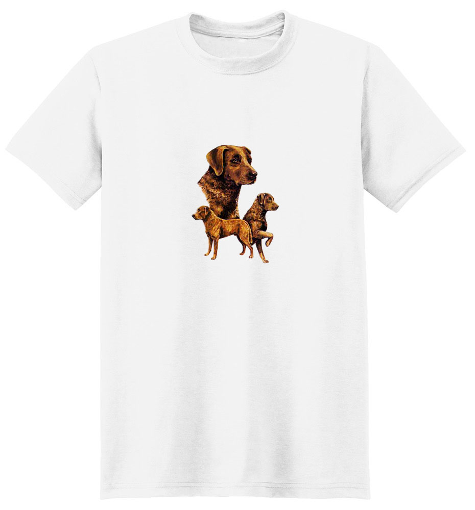 Chesapeake Bay Retriever T-Shirt - Best Friends