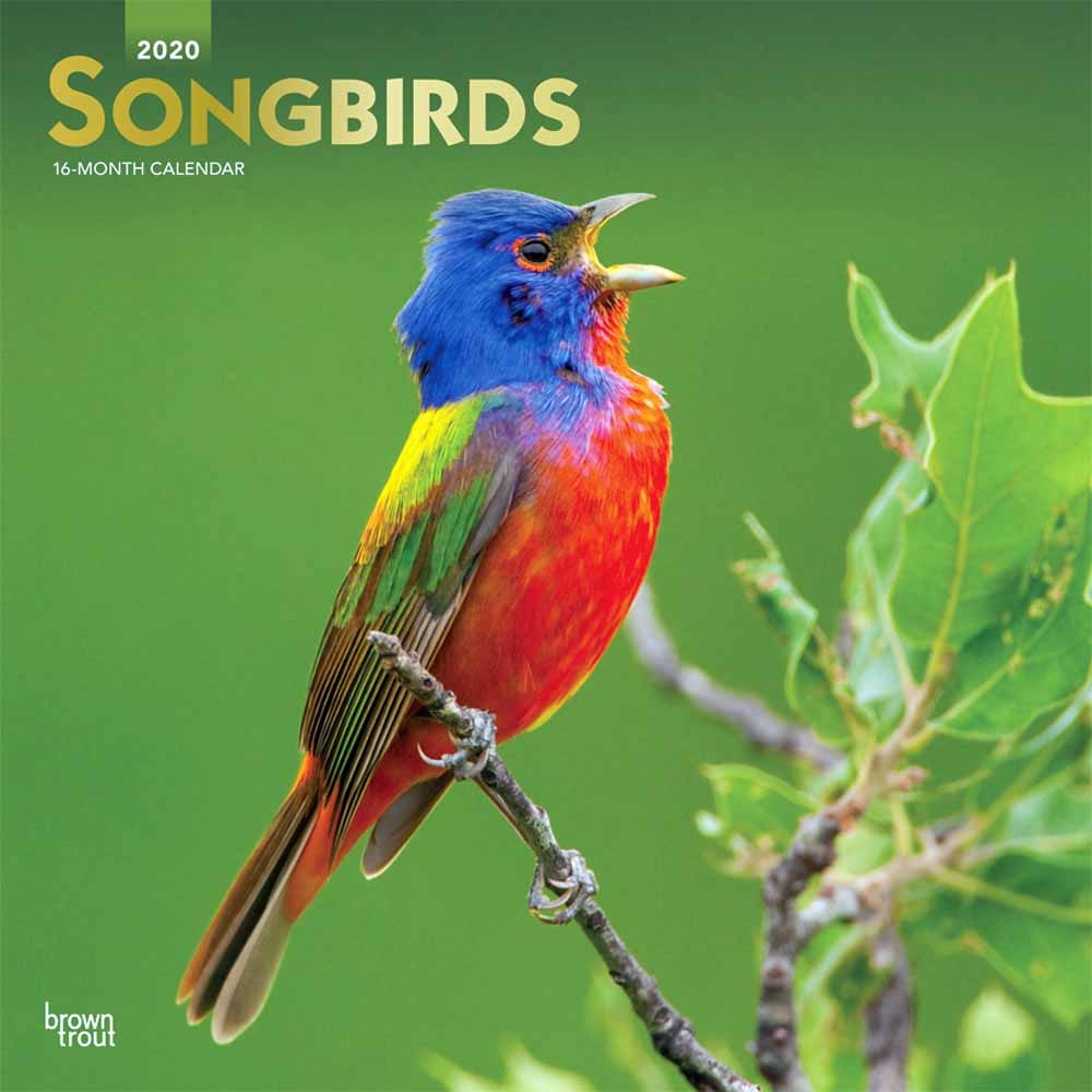 2020 Songbirds Calendar