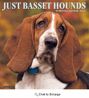 2020 Basset Hounds Calendar Willow Creek Press