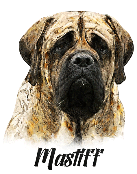 Mastiff T-Shirt - Vivid Colors