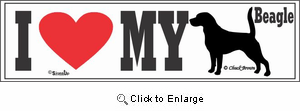 Beagle Bumper Sticker I Love My