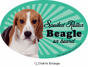 Beagle Car Magnet - Spoiled Rotten