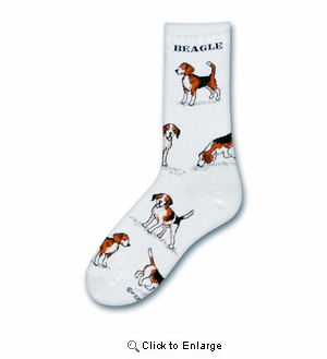 Beagle Poses Socks