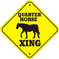 Quarter Horse Crossing