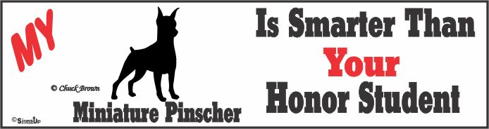 Miniature Pinscher Bumper Sticker Honor Student