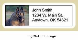 Belgian Tervuren Address Labels
