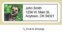Border Terrier Address Labels