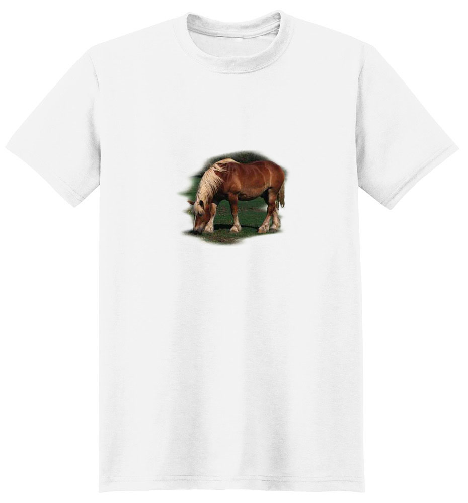Clydesdale T-Shirt - Eye Catching